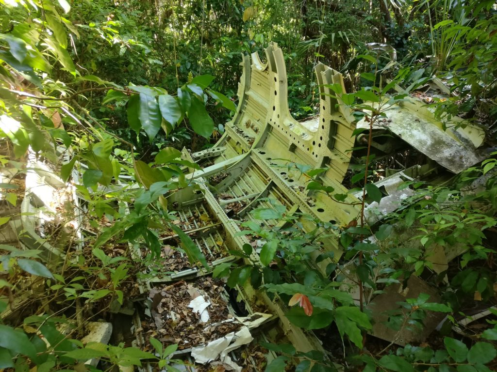 Abandoned airplane in the jungle
